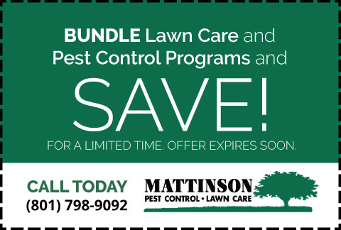 Mattinson-Coupon-10-Off-Bundle