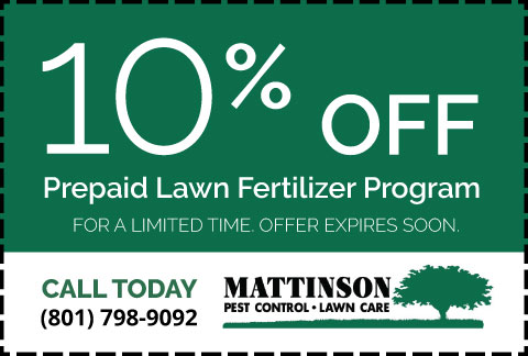 Mattinson-Coupon-10 Off Prepaid Lawn Pertilizer Program